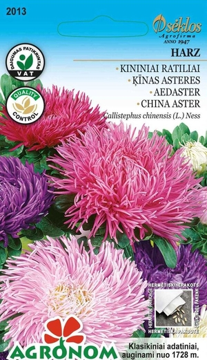 "Aster ""Harz Mix"""
