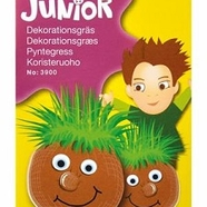 Dekorationsgräs, Junior